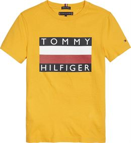 TOMMY HILFIGER ESSENTIAL TEE SS ORANGE